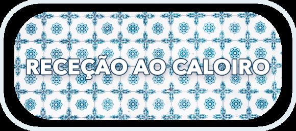 Receção ao Caloiro (1)